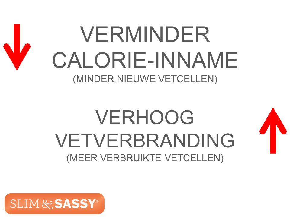 Slim & Sassy ™ Metabolic Blend VERMINDER CALORIE-INNAME (MINDER NIEUWE VETCELLEN) VERHOOG VETVERBRANDING (MEER VERBRUIKTE VETCELLEN) Slim & Sassy ™