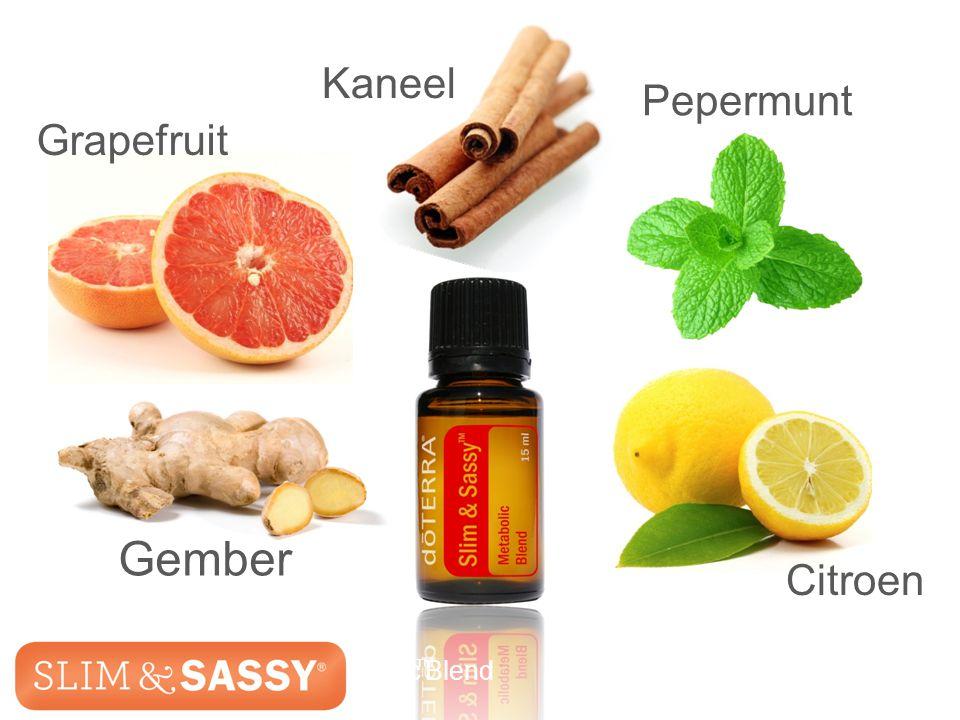 Slim & Sassy ™ Metabolic Blend Grapefruit Kaneel Pepermunt Gember Citroen Slim & Sassy ™