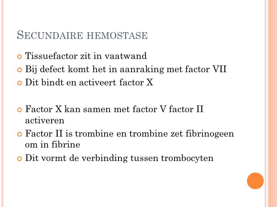 S ECUNDAIRE HEMOSTASE Tissuefactor zit in vaatwand Bij defect komt het in aanraking met factor VII Dit bindt en activeert factor X Factor X kan samen