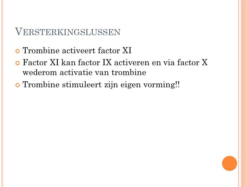 V ERSTERKINGSLUSSEN Trombine activeert factor XI Factor XI kan factor IX activeren en via factor X wederom activatie van trombine Trombine stimuleert