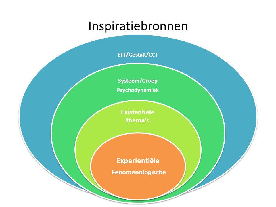 Inspiratiebronnen EFT/Gestalt/CCT Systeem/Groep Psychodynamiek Existentiële thema's Experientiële Fenomenologische