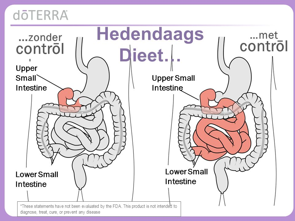 © 2015 dōTERRA Holdings, LLC Upper Small Intestine Lower Small Intestine Hedendaags Dieet… … zonder contrōl …met contrōl Lower Small Intestine Upper Small Intestine *These statements have not been evaluated by the FDA.