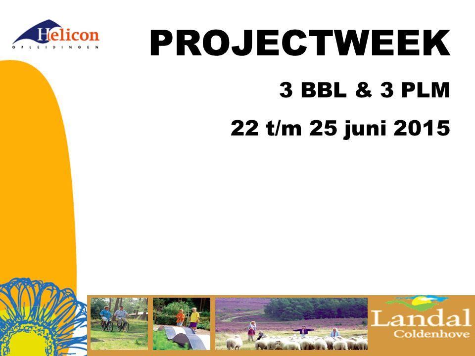 PROJECTWEEK 3 BBL & 3 PLM 22 t/m 25 juni 2015