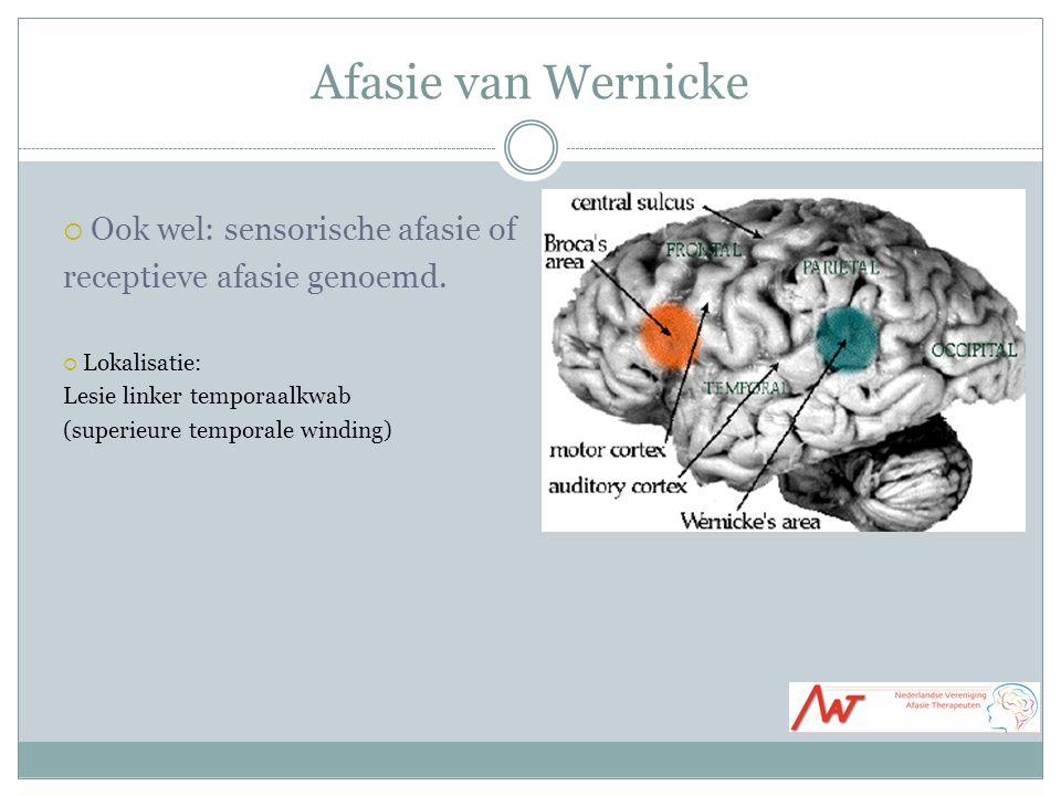 Afasie van Wernicke  Ook wel: sensorische afasie of receptieve afasie genoemd.  Lokalisatie: Lesie linker temporaalkwab (superieure temporale windin