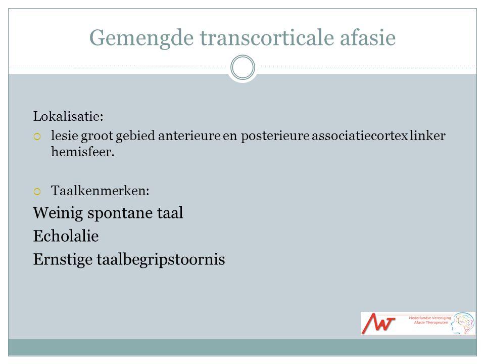 Gemengde transcorticale afasie Lokalisatie:  lesie groot gebied anterieure en posterieure associatiecortex linker hemisfeer.  Taalkenmerken: Weinig