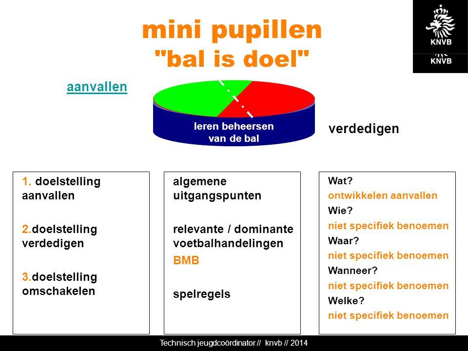 Technisch jeugdcoördinator // knvb // 2014 leren beheersen van de bal mini pupillen