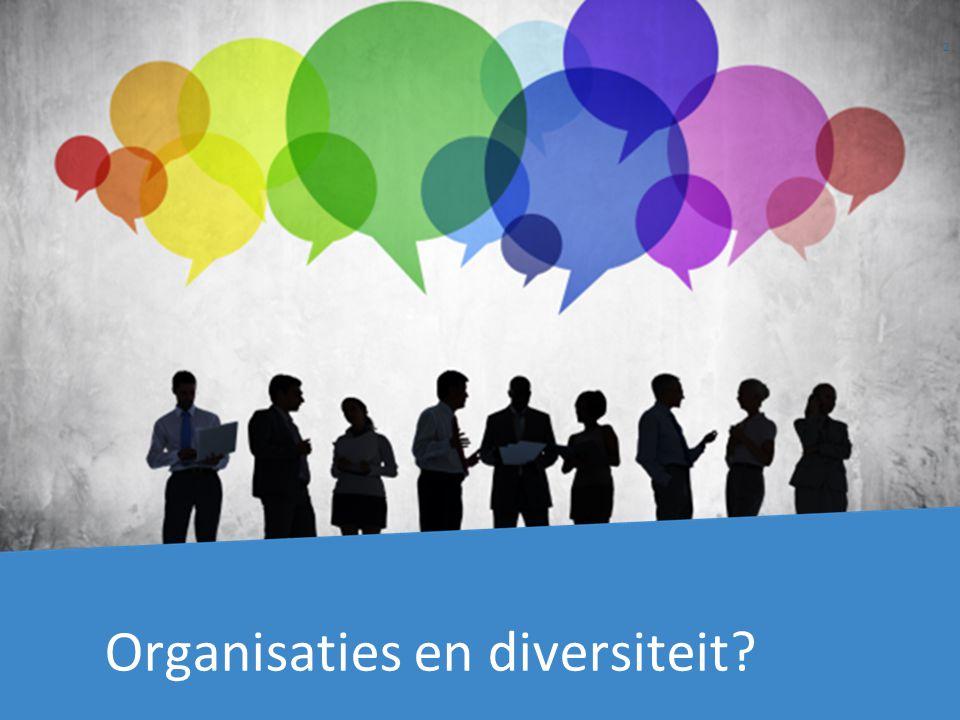 Organisaties en diversiteit 2