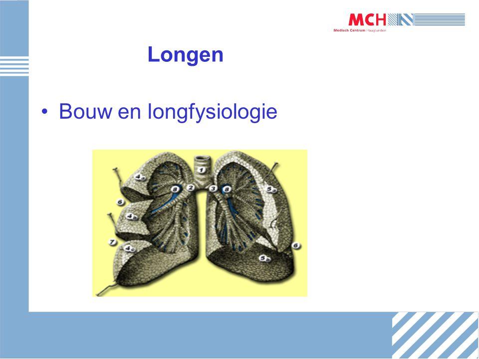 Longen Bouw en longfysiologie