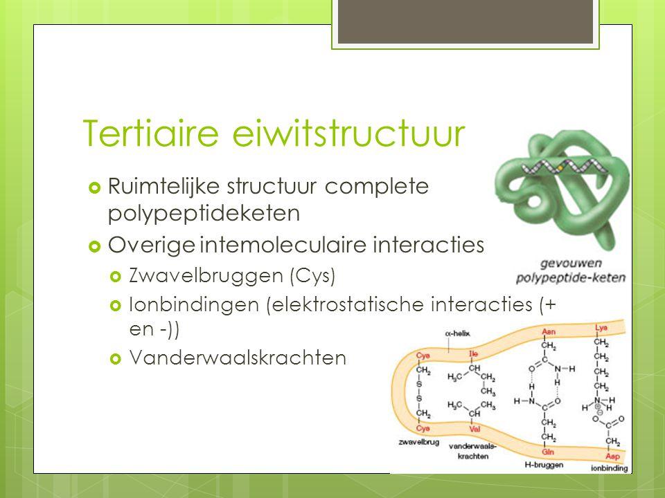 Tertiaire eiwitstructuur  Ruimtelijke structuur complete polypeptideketen  Overige intemoleculaire interacties  Zwavelbruggen (Cys)  Ionbindingen