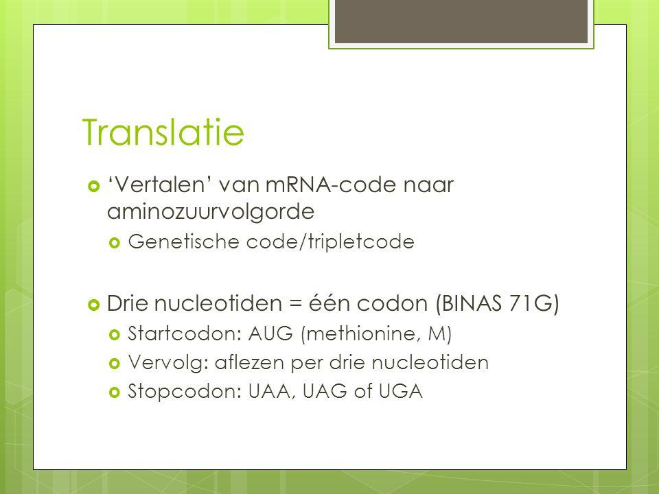 Translatie  'Vertalen' van mRNA-code naar aminozuurvolgorde  Genetische code/tripletcode  Drie nucleotiden = één codon (BINAS 71G)  Startcodon: AU