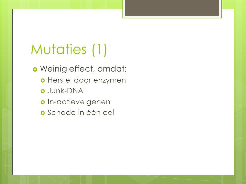 Mutaties (1)  Weinig effect, omdat:  Herstel door enzymen  Junk-DNA  In-actieve genen  Schade in één cel