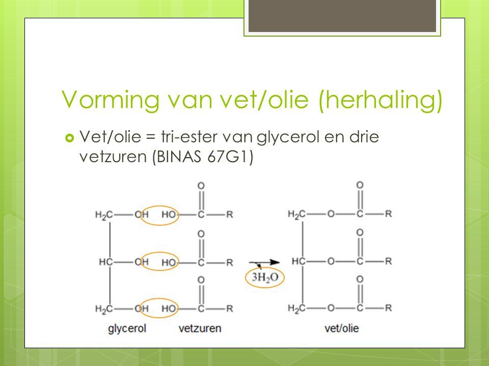 Vorming van vet/olie (herhaling)  Vet/olie = tri-ester van glycerol en drie vetzuren (BINAS 67G1)