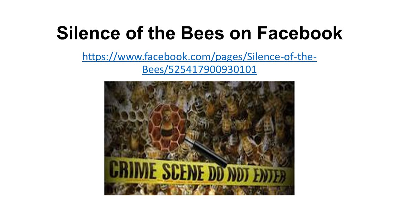 Silence of the Bees on Facebook https://www.facebook.com/pages/Silence-of-the- Bees/525417900930101