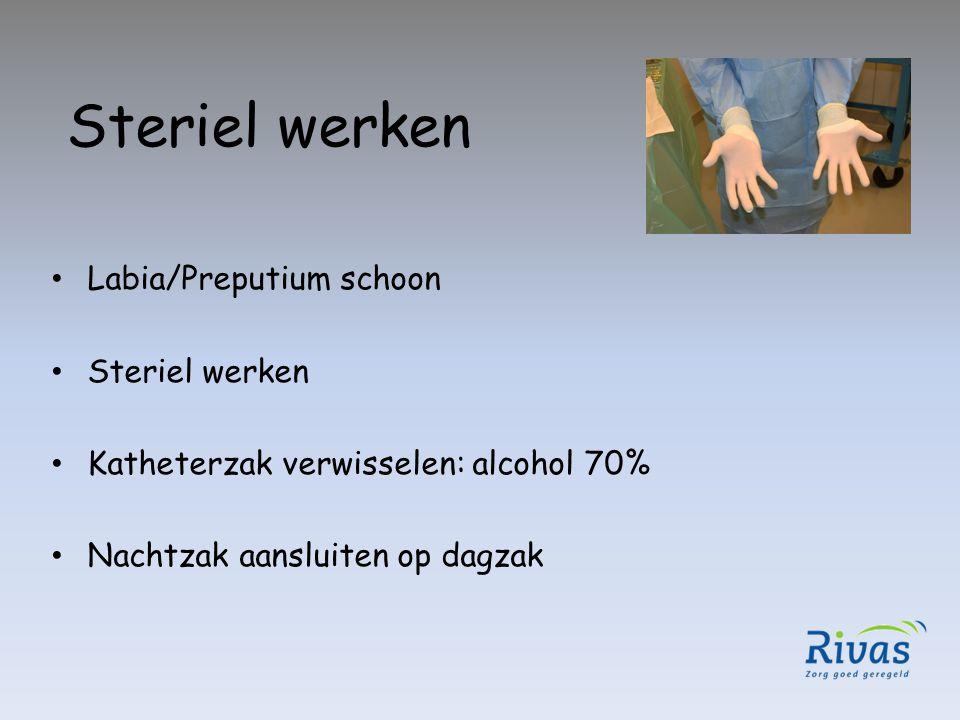 Steriel werken Labia/Preputium schoon Steriel werken Katheterzak verwisselen: alcohol 70% Nachtzak aansluiten op dagzak
