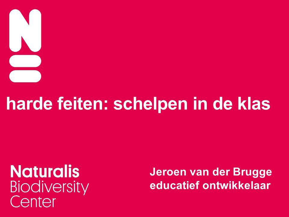 harde feiten: schelpen in de klas Jeroen van der Brugge educatief ontwikkelaar