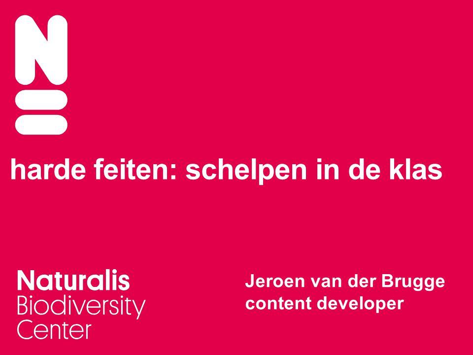harde feiten: schelpen in de klas Jeroen van der Brugge content developer