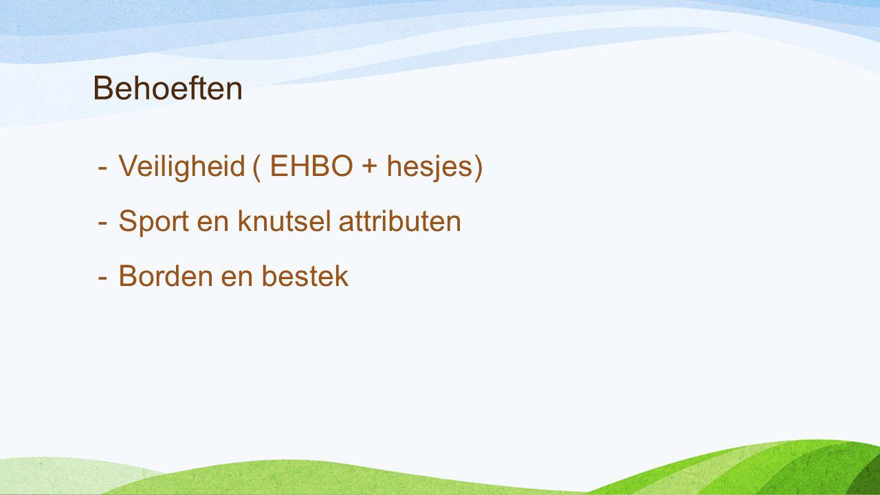 Veiligheid Voor iedere groepsleider die op pad gaat een EHBO-tas met: -Veiligheidshesjes -Basis eerste hulp artikelen Deze tas met inhoud van HEMA kost € 13,- Veiligheidshesjes € 1,95 bij action.