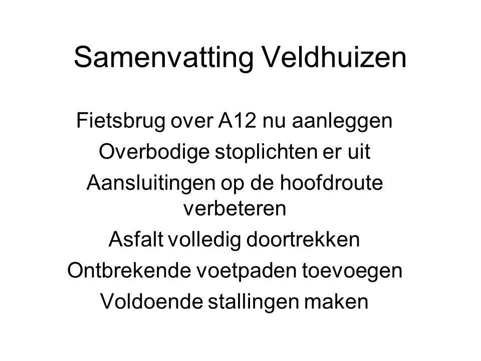 Samenvatting Veldhuizen Fietsbrug over A12 nu aanleggen Overbodige stoplichten er uit Aansluitingen op de hoofdroute verbeteren Asfalt volledig doortrekken Ontbrekende voetpaden toevoegen Voldoende stallingen maken