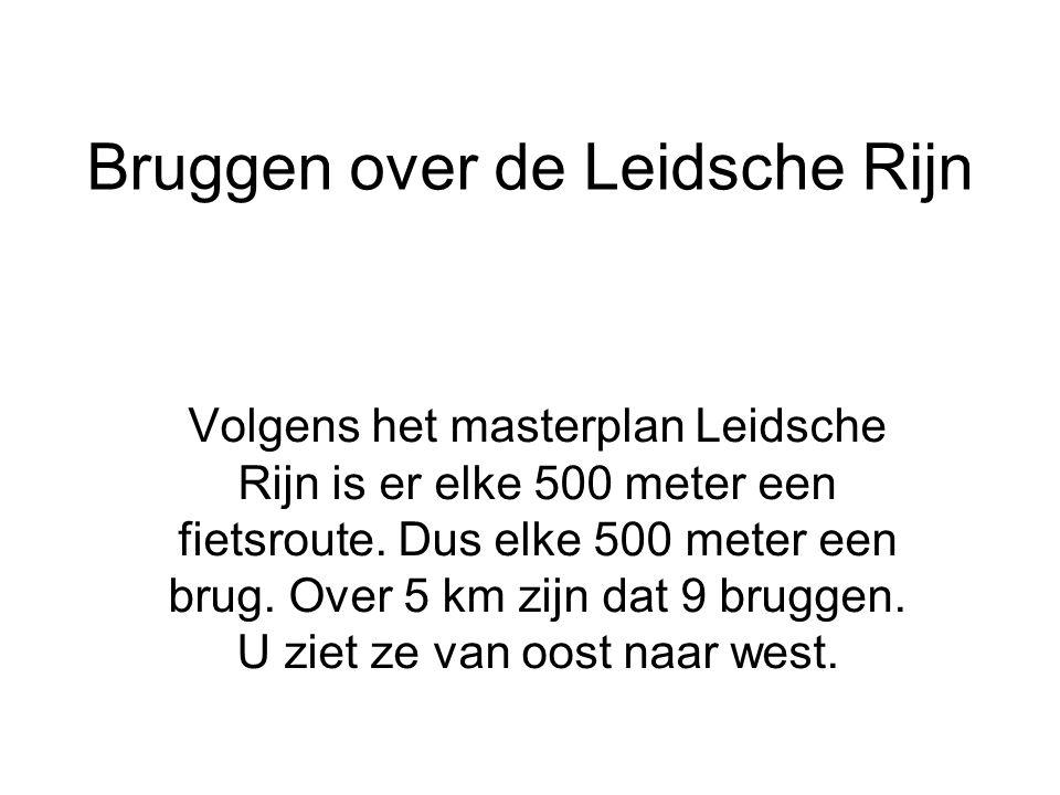 Bruggen over de Leidsche Rijn Volgens het masterplan Leidsche Rijn is er elke 500 meter een fietsroute. Dus elke 500 meter een brug. Over 5 km zijn da