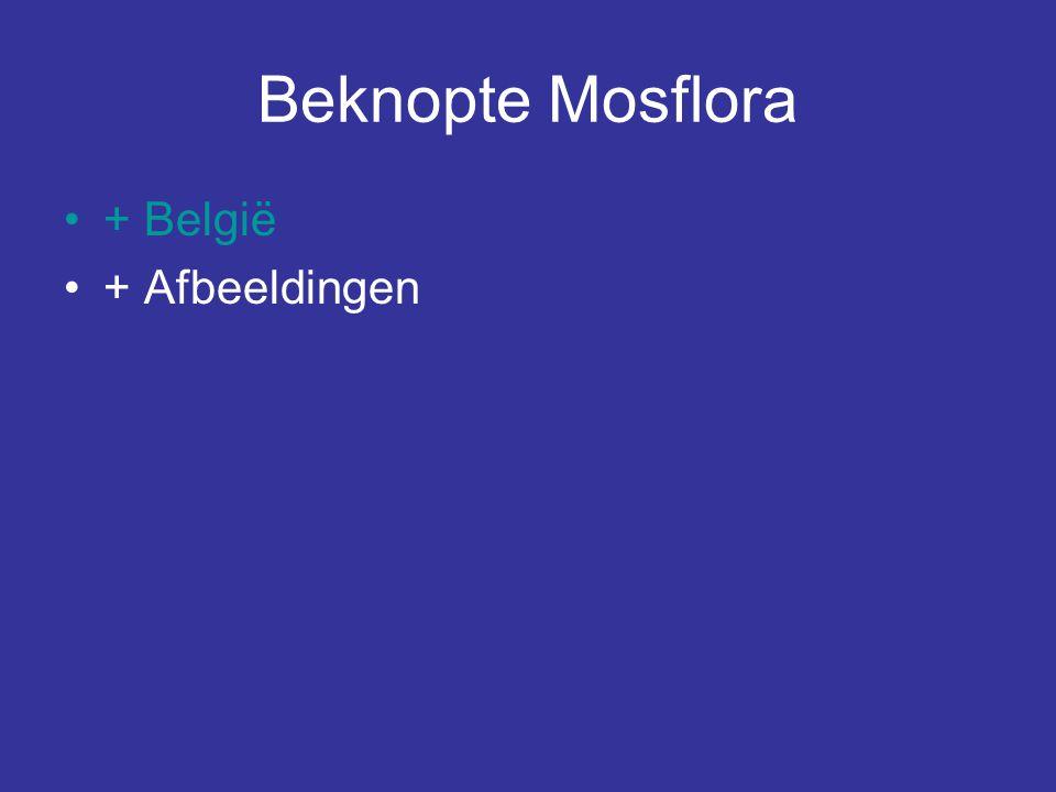 Beknopte Mosflora + België + Afbeeldingen