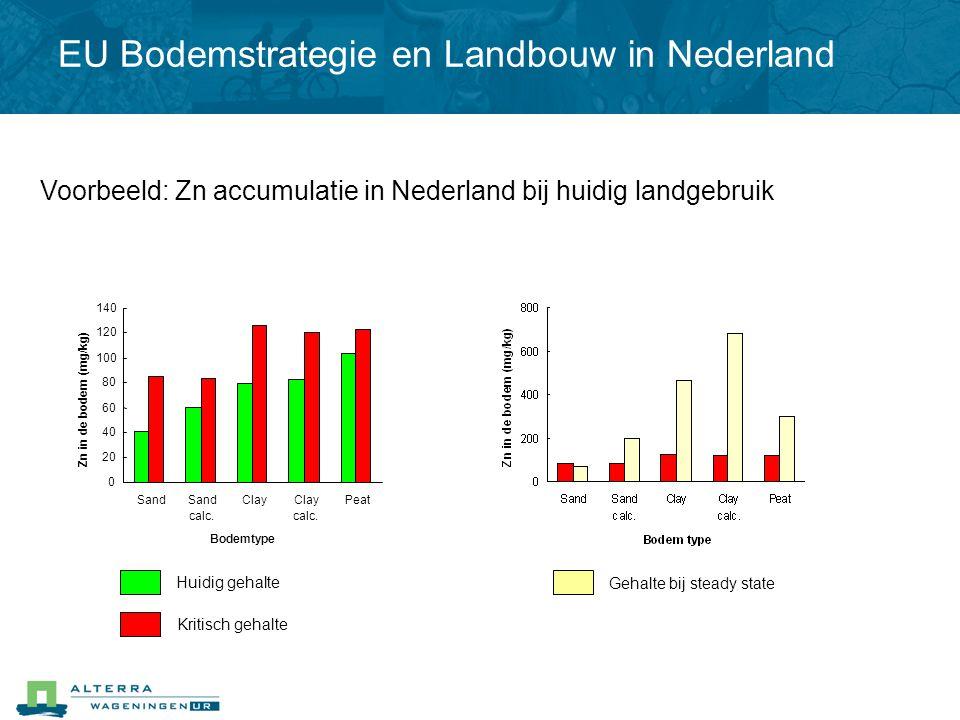 Voorbeeld: Zn accumulatie in Nederland bij huidig landgebruik Huidig gehalte Gehalte bij steady state Kritisch gehalte 0 20 40 60 80 100 120 140 Sand