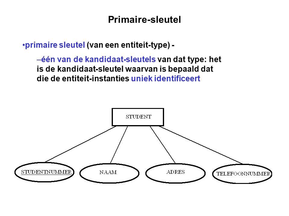Primaire-sleutel primaire sleutel (van een entiteit-type) - – één van de kandidaat-sleutels van dat type: het is de kandidaat-sleutel waarvan is bepaa