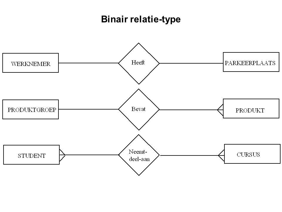 Binair relatie-type