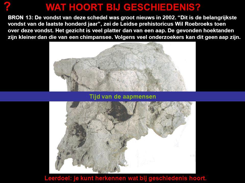 """BRON 13: De vondst van deze schedel was groot nieuws in 2002. """"Dit is de belangrijkste vondst van de laatste honderd jaar"""", zei de Leidse prehistoricu"""