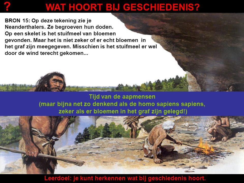 BRON 15: Op deze tekening zie je Neanderthalers. Ze leefden vanaf ongeveer 20.000 jaar voor het ontstaan van de eerste mensen zoals wij. Ze stierven u