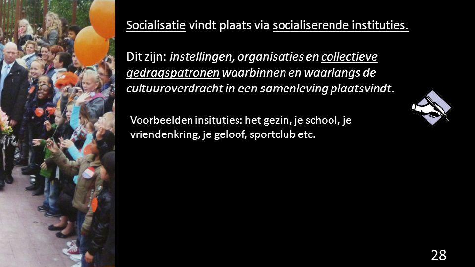 Socialisatie vindt plaats via socialiserende instituties. Dit zijn: instellingen, organisaties en collectieve gedragspatronen waarbinnen en waarlangs
