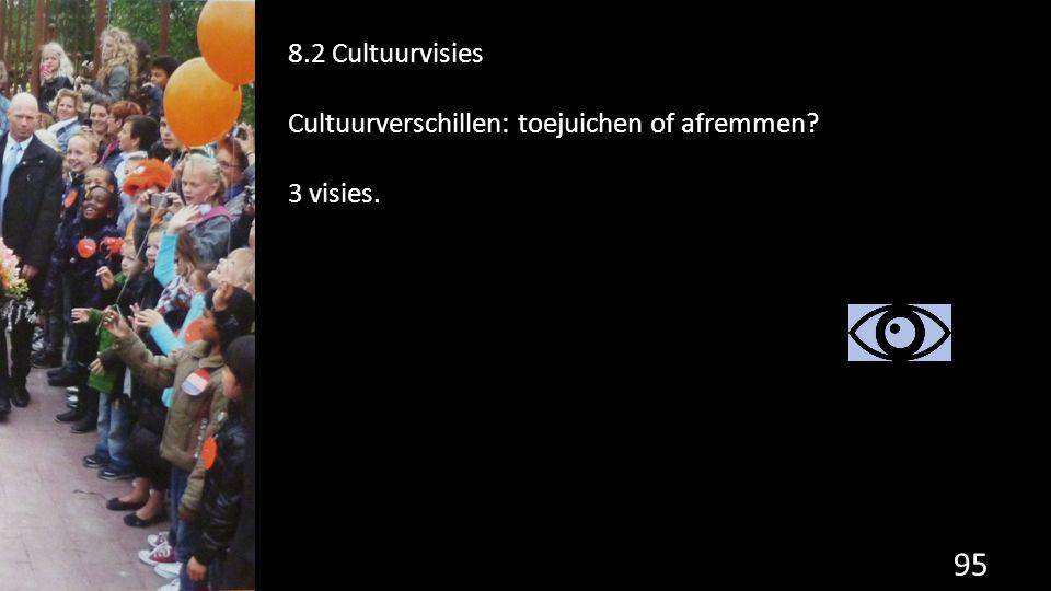 95 8.2 Cultuurvisies Cultuurverschillen: toejuichen of afremmen? 3 visies.