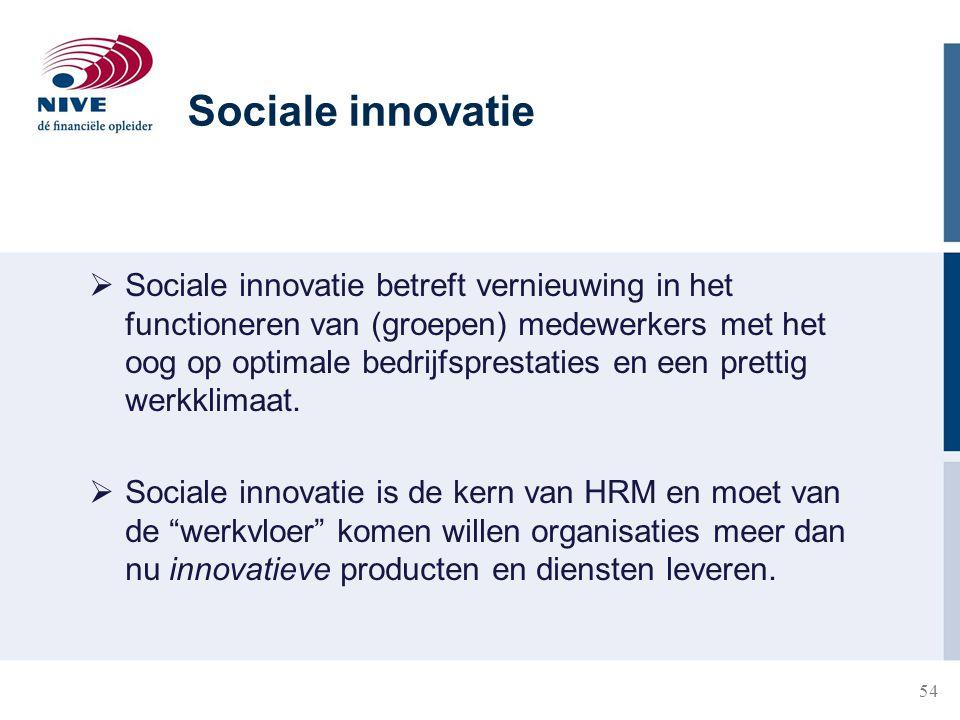 54  Sociale innovatie betreft vernieuwing in het functioneren van (groepen) medewerkers met het oog op optimale bedrijfsprestaties en een prettig wer