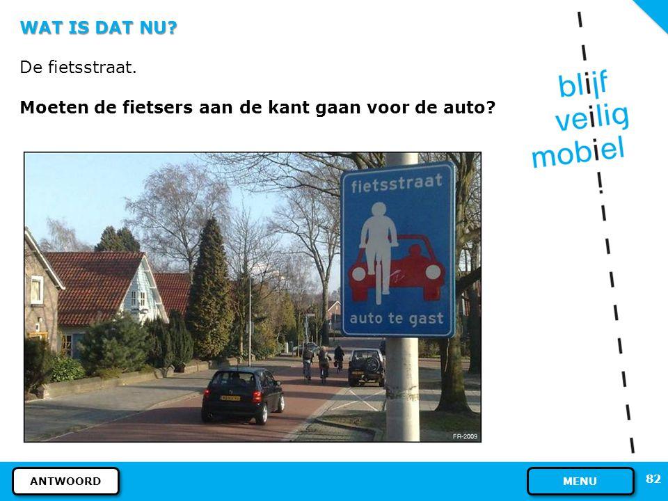 WAT IS DAT NU? Dit bord betekent: Hier kunt u uw scootmobiel parkeren. Houdt u er rekening mee dat uw scootmobiel meer ruimte inneemt dan een fiets. P