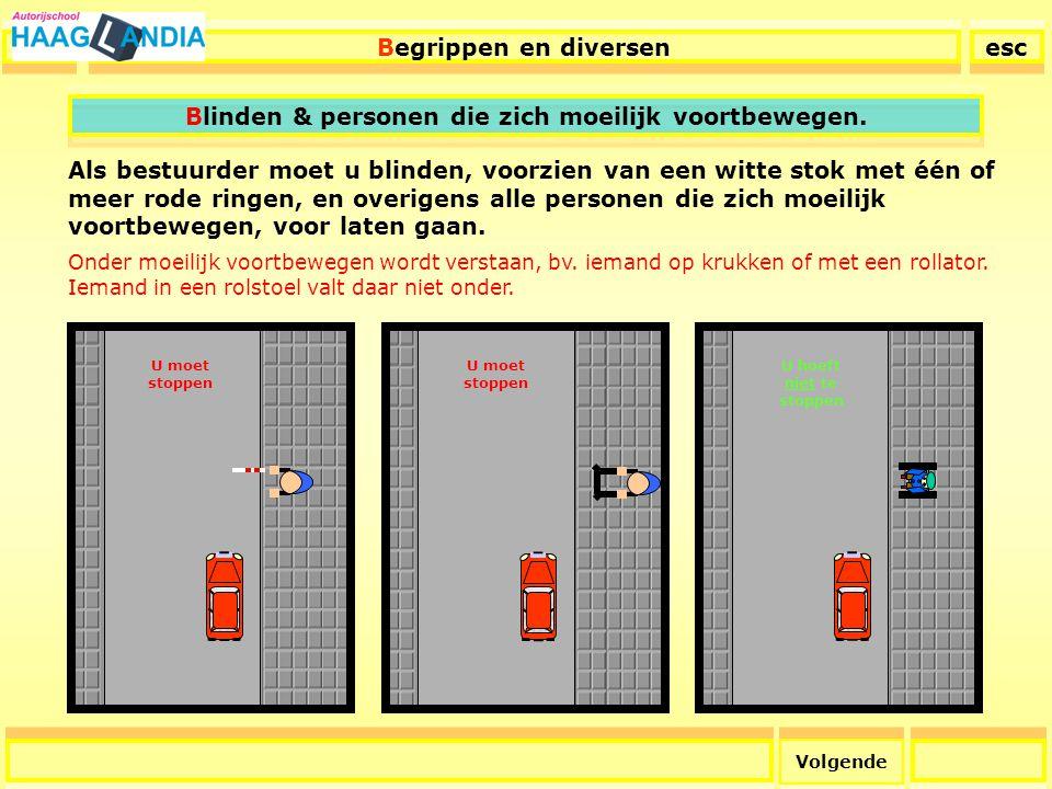 35 Blinden, personen die zich moeilijk voortbewegen & Voetgangersoversteekplaatsen Copyright © 2006 J.R
