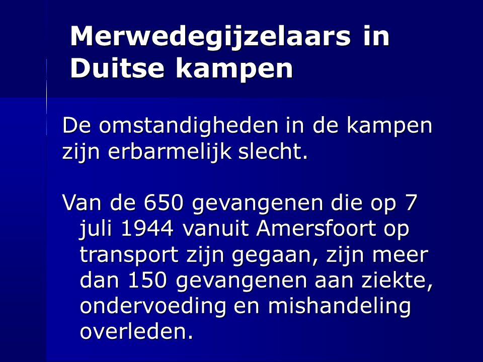 Merwedegijzelaars in Duitse kampen De omstandigheden in de kampen zijn erbarmelijk slecht. Van de 650 gevangenen die op 7 juli 1944 vanuit Amersfoort