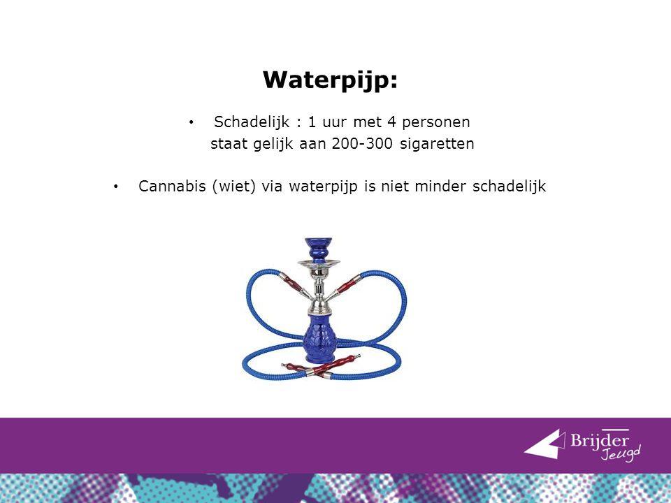 Waterpijp: Schadelijk : 1 uur met 4 personen staat gelijk aan 200-300 sigaretten Cannabis (wiet) via waterpijp is niet minder schadelijk