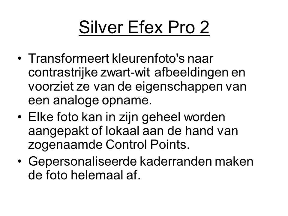 Silver Efex Pro 2 Transformeert kleurenfoto's naar contrastrijke zwart-wit afbeeldingen en voorziet ze van de eigenschappen van een analoge opname. El