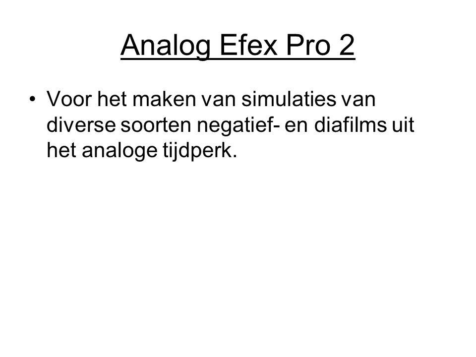 Analog Efex Pro 2 Voor het maken van simulaties van diverse soorten negatief- en diafilms uit het analoge tijdperk.