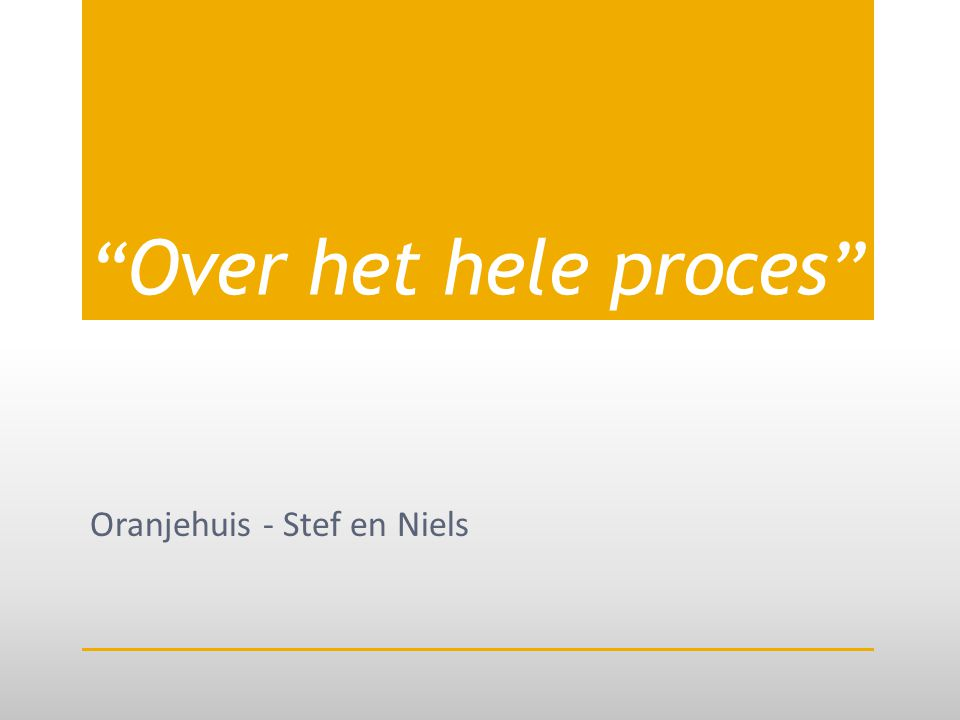 Over het hele proces Oranjehuis - Stef en Niels