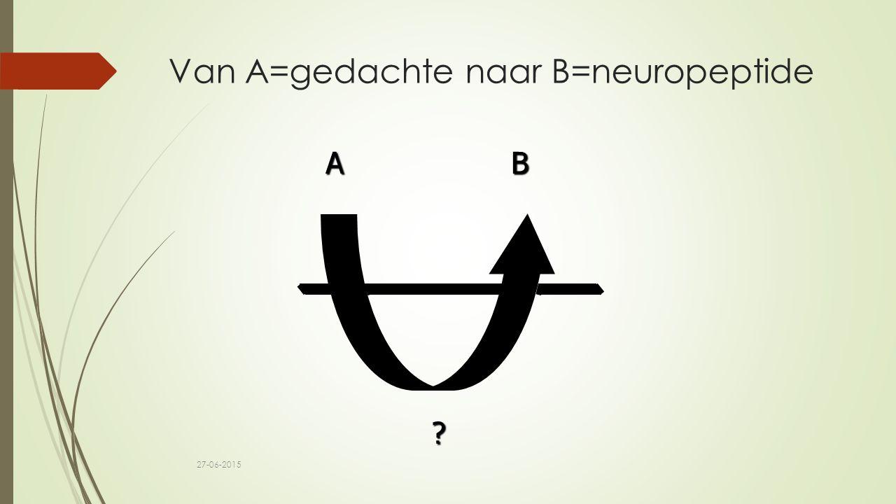 Van A=gedachte naar B=neuropeptide A B ? 27-06-2015