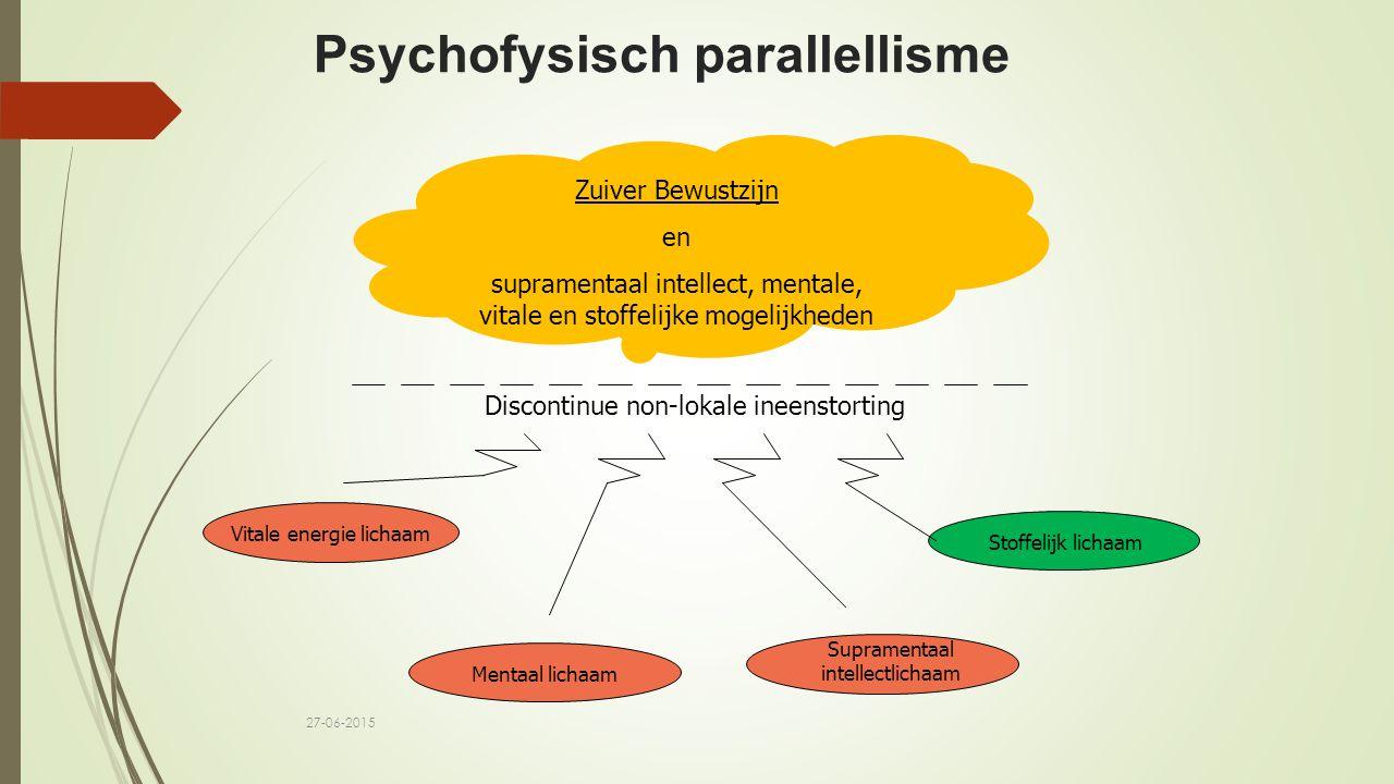 Psychofysisch parallellisme Zuiver Bewustzijn en supramentaal intellect, mentale, vitale en stoffelijke mogelijkheden Discontinue non-lokale ineenstor