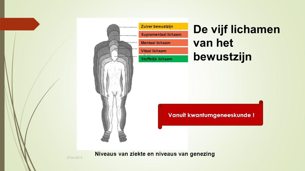 Stoffelijk lichaam Vitaal lichaam Mentaal lichaam Supramentaal lichaam Zuiver bewustzijn Niveaus van ziekte en niveaus van genezing Vanuit kwantumgeneeskunde .