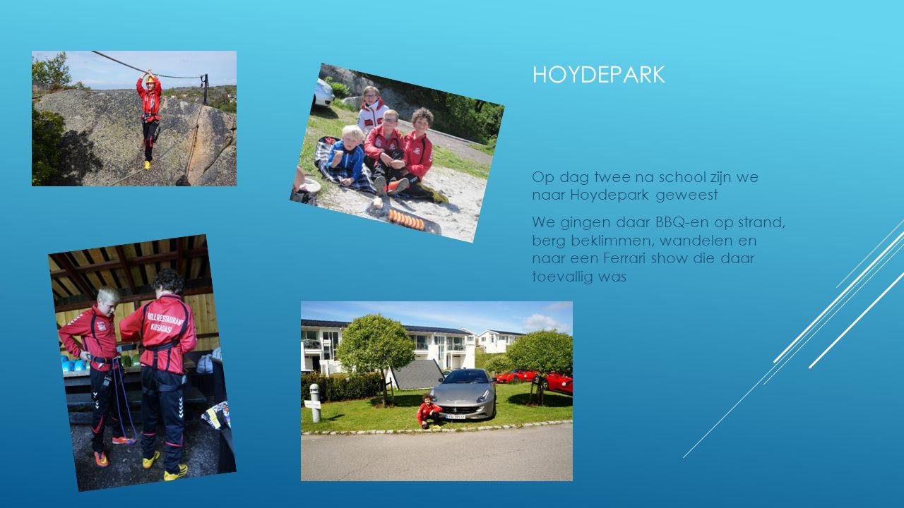 HOYDEPARK Op dag twee na school zijn we naar Hoydepark geweest We gingen daar BBQ-en op strand, berg beklimmen, wandelen en naar een Ferrari show die