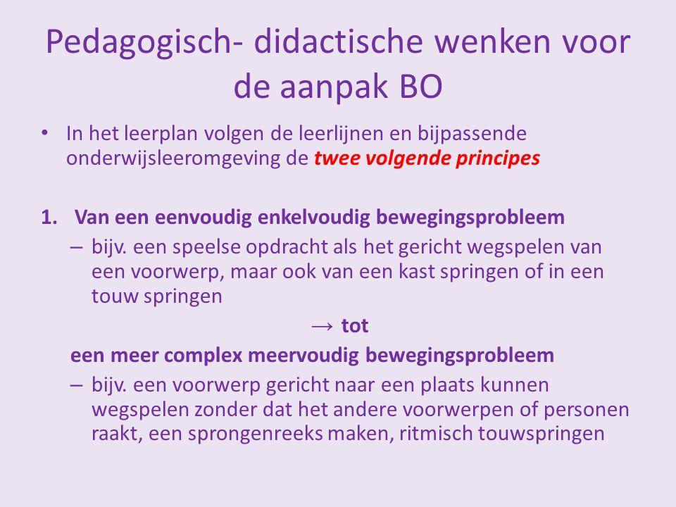 Pedagogisch- didactische wenken voor de aanpak BO In het leerplan volgen de leerlijnen en bijpassende onderwijsleeromgeving de twee volgende principes