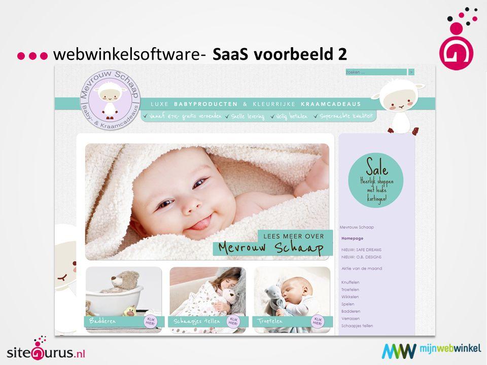webwinkelsoftware- SaaS voorbeeld 2