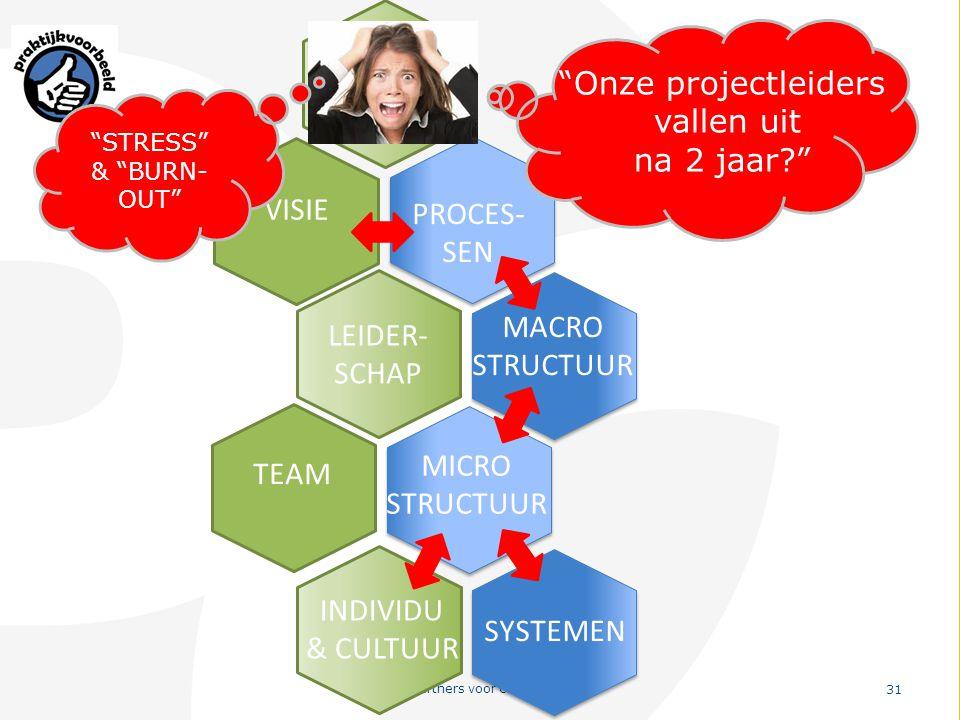 """PvO – Partners voor Ondernemers 31 VISIE PROCES- SEN MACRO STRUCTUUR LEIDER- SCHAP MICRO STRUCTUUR TEAM SYSTEMEN INDIVIDU & CULTUUR WAAROM? """"Onze proj"""
