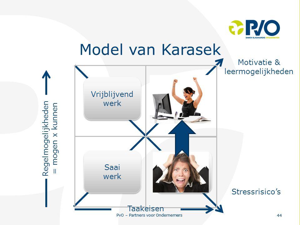 PvO – Partners voor Ondernemers 44 PvO – Partners voor Ondernemers 44 Regelmogelijkheden Taakeisen Vrijblijvend werk Vrijblijvend werk Saai werk Saai