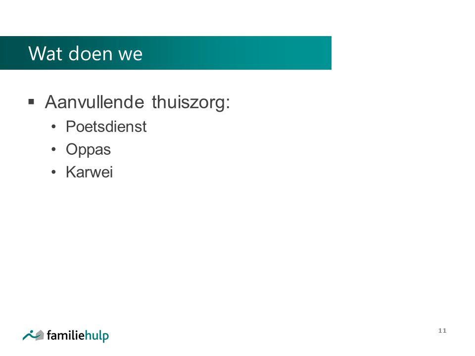 Wat doen we  Aanvullende thuiszorg: Poetsdienst Oppas Karwei 11