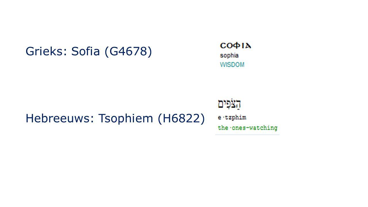 Grieks: Sofia (G4678) Hebreeuws: Tsophiem (H6822)