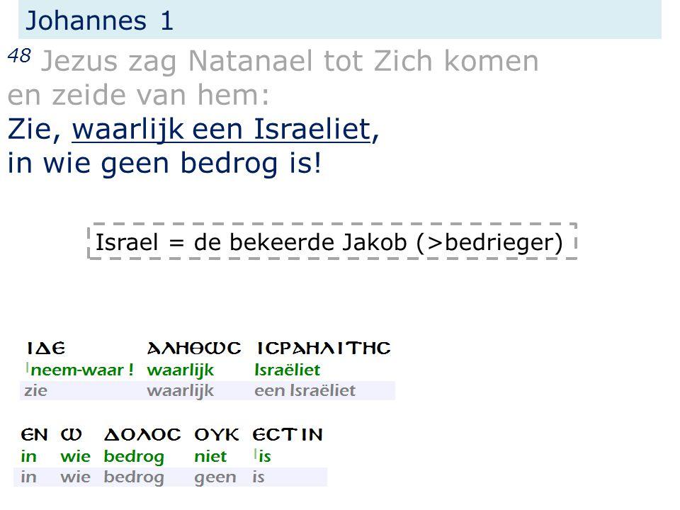 Johannes 1 48 Jezus zag Natanael tot Zich komen en zeide van hem: Zie, waarlijk een Israeliet, in wie geen bedrog is.